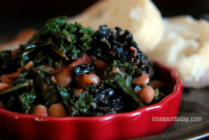 kale and chipotle beans 1
