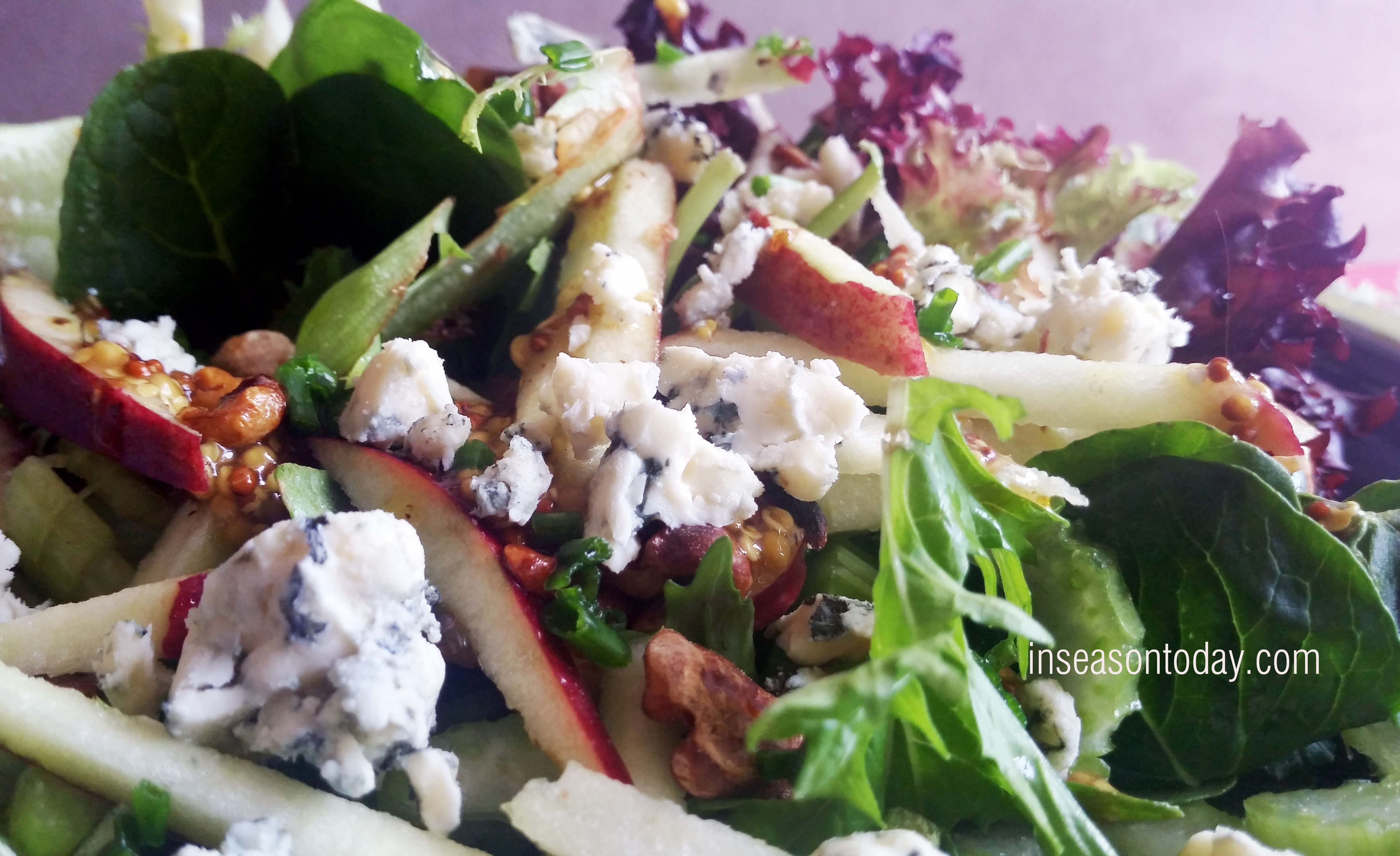 celery and blue cheese salad 2